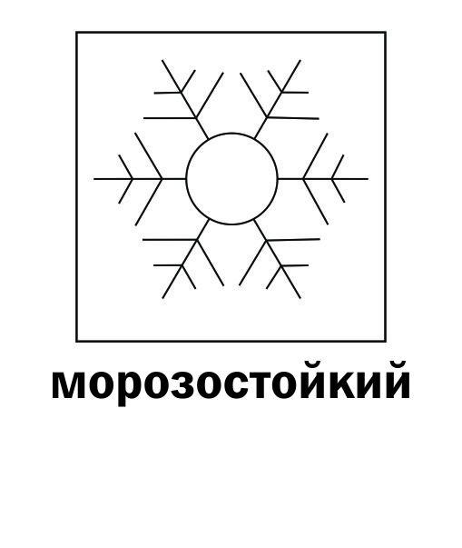 морозостойкий